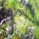 The Magical Mossy Forest 1, 3 x 4 feet, watercolor on canvas