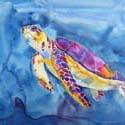 Turtle a, 16 x 20 inches, watercolor on canvas