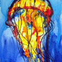 Jelly Fish 2, 16 x 22 inches, watercolor on canvas